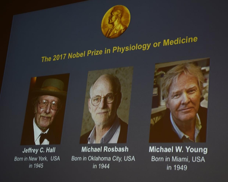 Le Prix Nobel de médecine à trois professeurs américains