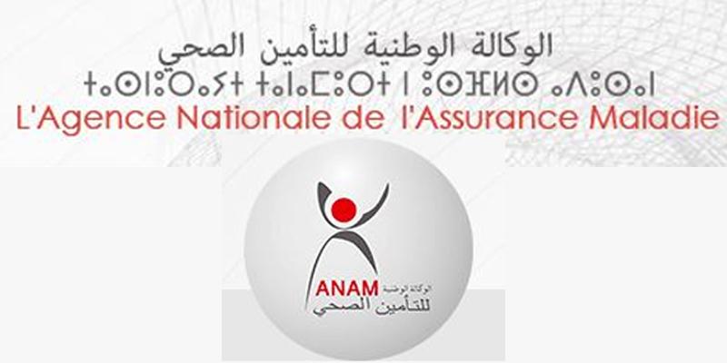Conseil de gouvernement: Khalid Lahlou à la tête de l'ANAM
