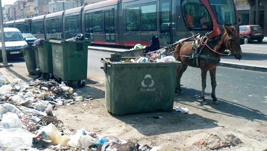 Services de propreté : Casablanca flique les délégataires