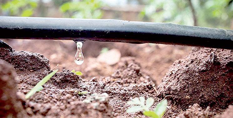 Irrigation localisée : Le Fonds de développement agricole mobilisera 1,67 Md de DH en 2019