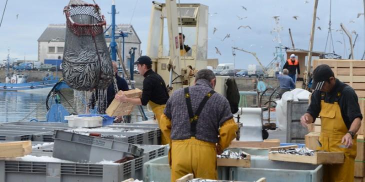 Parlement européen: La commission des budgets vote un avis favorable à l'adoption de l'accord de pêche Maroc-UE
