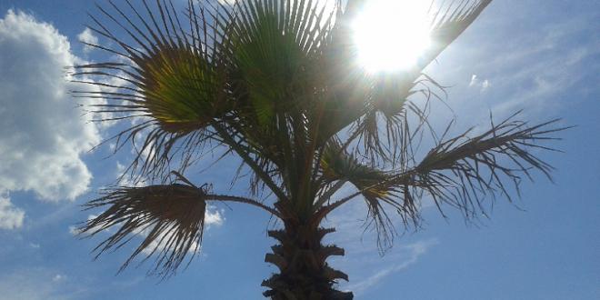 Averses orageuses et vague de chaleur au Maroc