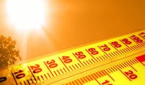 Juillet 2019, le mois le plus chaud sur terre