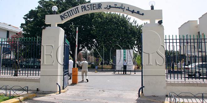 Institut Pasteur du Maroc: Les souches du SARS COV2 circulant au Maroc n'ont pas connu de transformations génétiques majeures