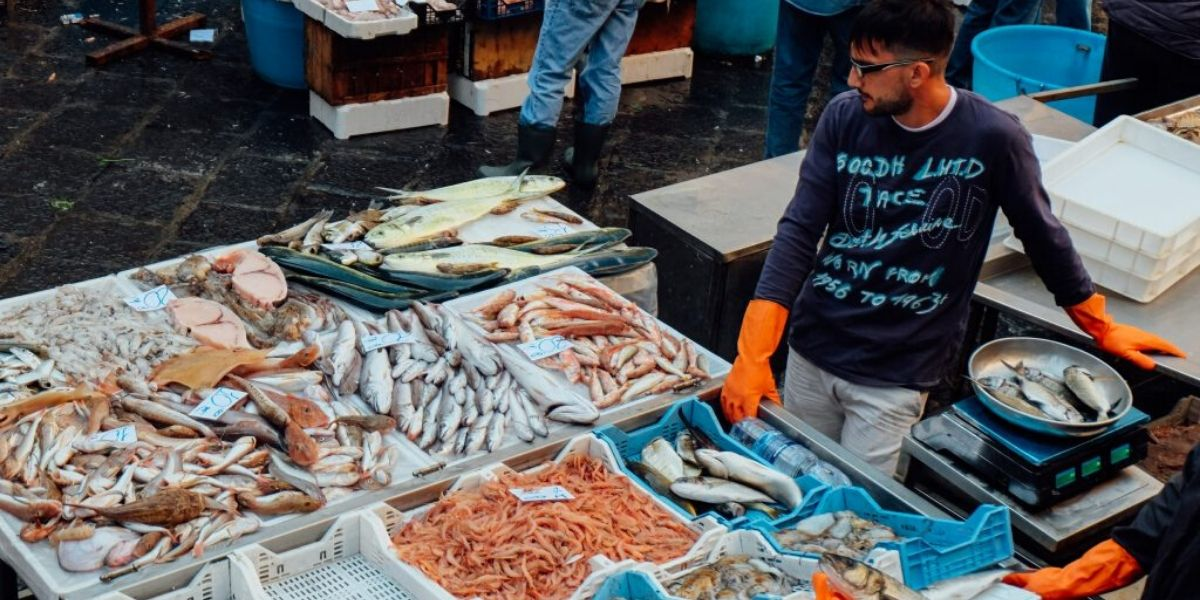 Pêche: Hausse de la valeur des produits commercialisés de 30% à fin septembre