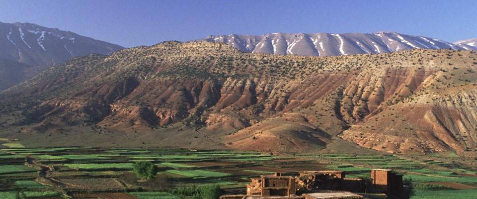 Développement rural : Le Maroc décroche un financement de 45,1 millions de dollars
