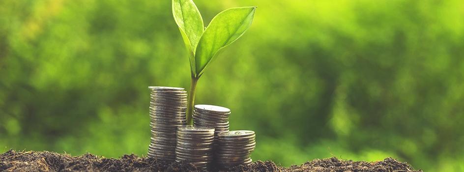 Banques participatives : Les premiers agréments sont tombés