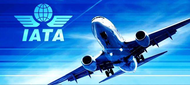 Transport aérien : Les bénéfices s'envolent