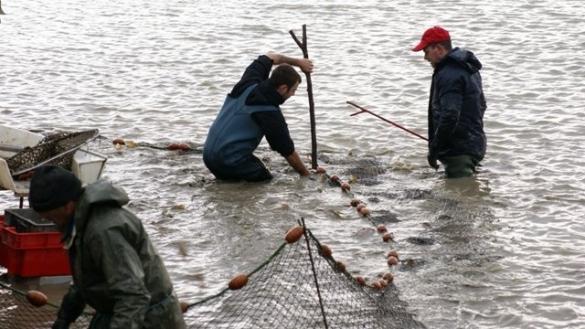Pêche : Une production estimée à 16.000 tonnes